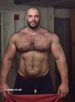 daddy bear hairy chest muscle dad - Copy