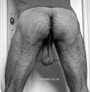 HAIRY ARSE LOW HANGERS 8