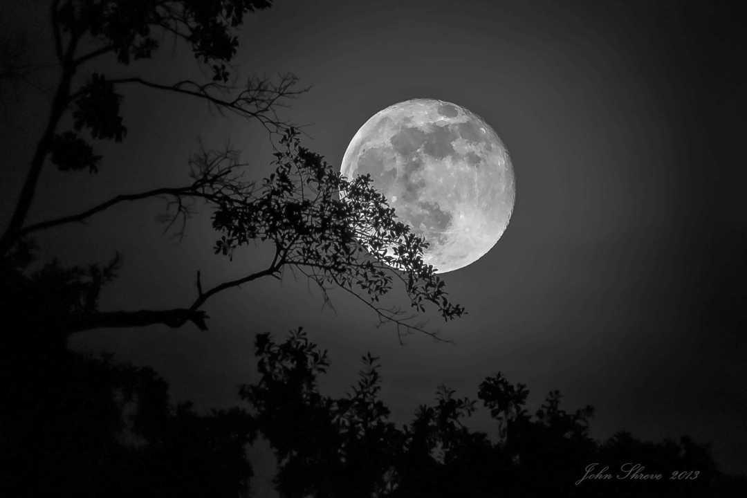 Moon festival Moon by John Shreve