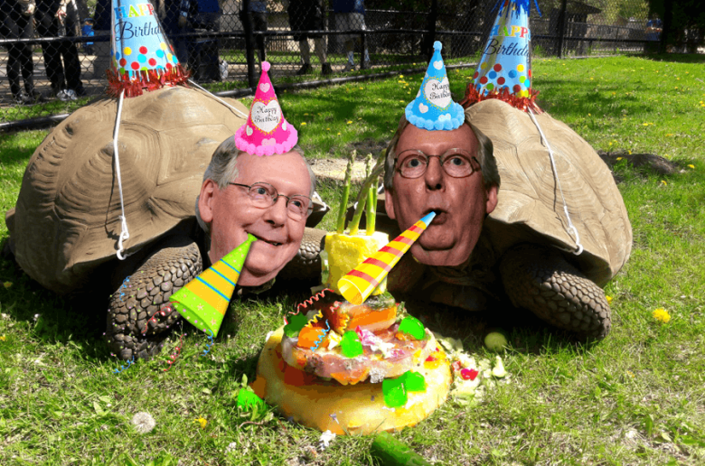 Mitch McConnell turtle party