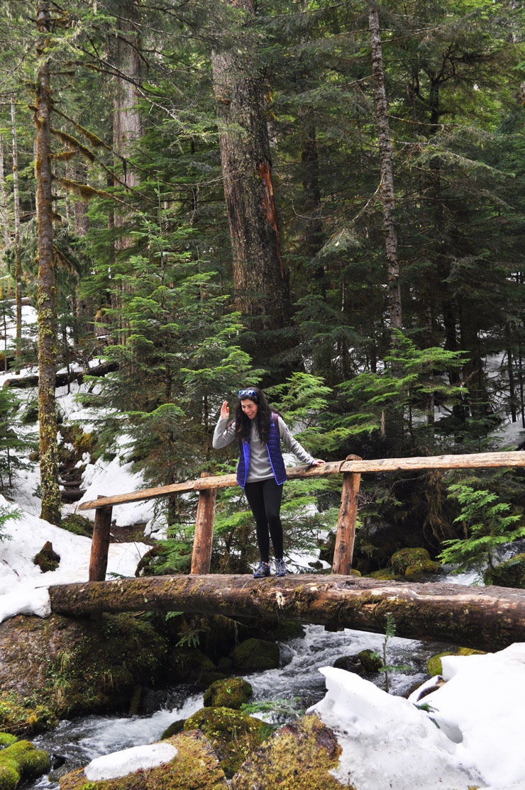 Spring Break Trip to Olympic National Park in Washington | www.cupcakesandthecosmos.com