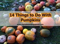 14 Things to Do With Pumpkins