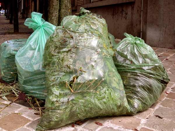 Smaltimento rifiuti vegetali Piacenza Fiorenzuola DArda