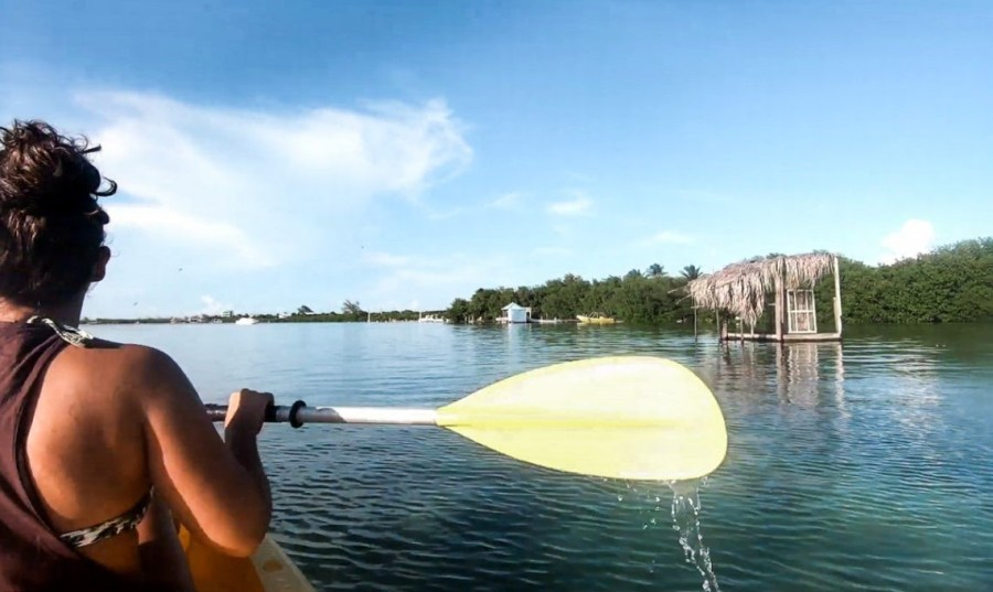 kayak the island: things to do on caye caulker belize