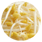 menu-item-base-bean-sprouts