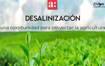 Desalinización: una oportunidad para proyectar la agricultura