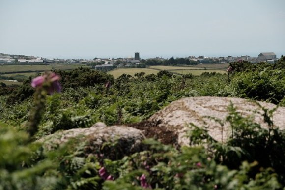 View over the two remaining capstones of Tregeseal Entrance Grave in the foreground. Green ferns and pink foxgloves cover the lower half of the image. In the background the houses, chapels and church tower in St Just are visible with its parapets, and the hazy sea is beyond.
