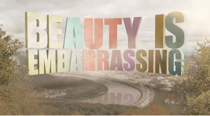 """Beauty is Embarrassing"""