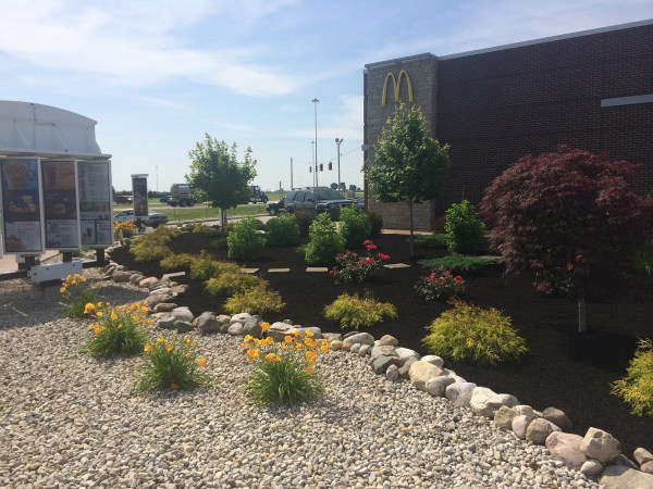 commercial curb appeal landscape