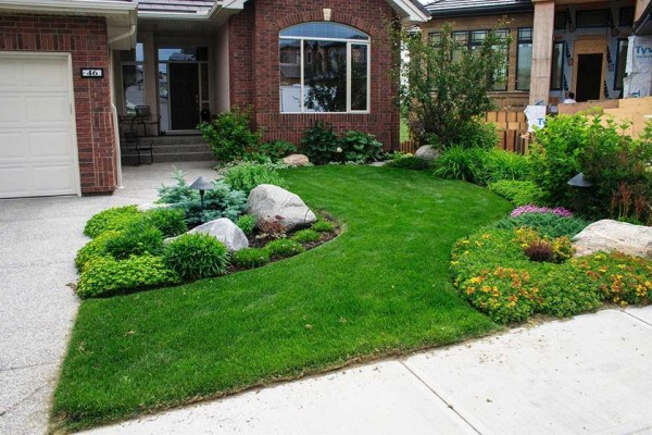 small front yard landscape