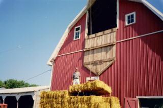hay bales barn