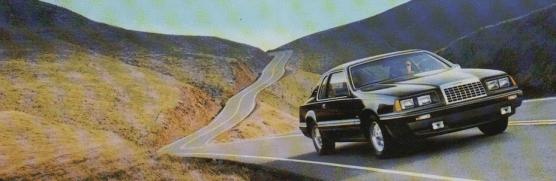 Ford Thunderbird TC 1983 br m