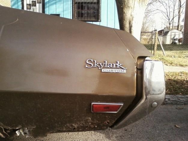 skylark4
