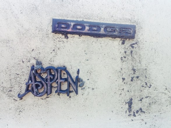 DodgeAspenWagon1