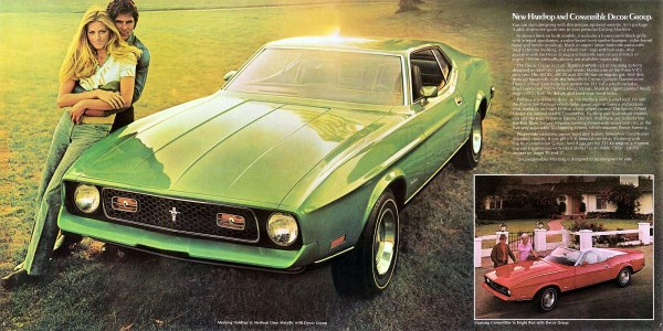 1972 Ford Mustang Decor Group