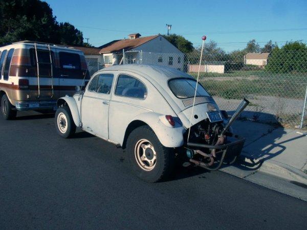 Volkswagen Beetle Baja rear
