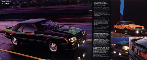 1980 Ford Mustang-08-09