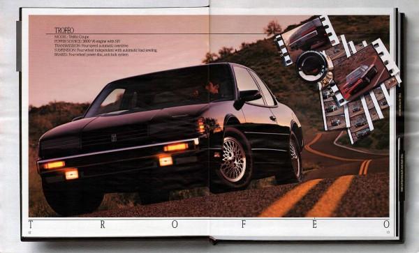 1989 Oldsmobile Full Size Prestige-12-13