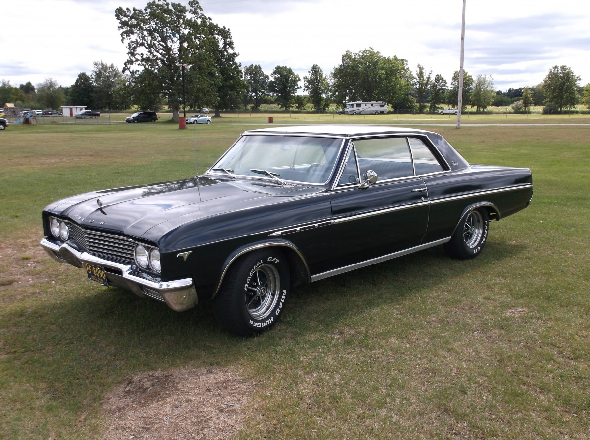 Coal 1965 Buick Skylark Sport Coupe Occasionally Even I