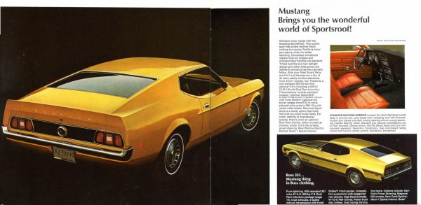 1971 Mustang-10-11