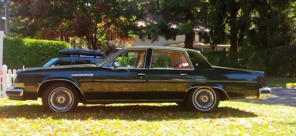 Buick 1977 Electra Side Profile