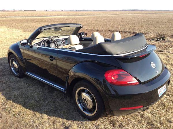 new_beetle