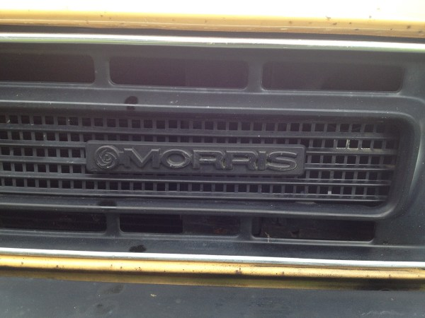 1980 MORRIS Marina can orange grille