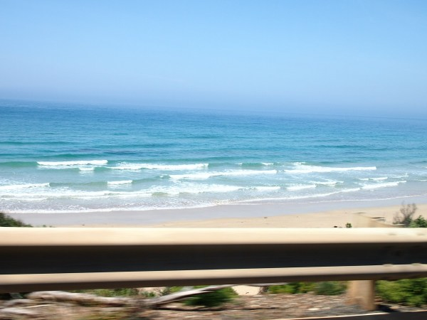 great ocean road (6)