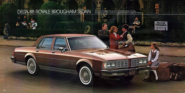 1983 Oldsmobile Full Size-18-19