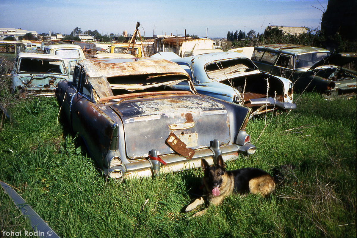 Junkyard Classics: Relics From The Past- In The Past