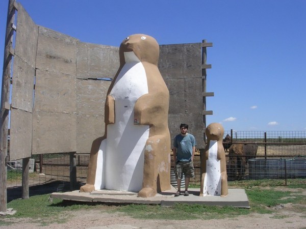 10 - Worlds largest prairie dog