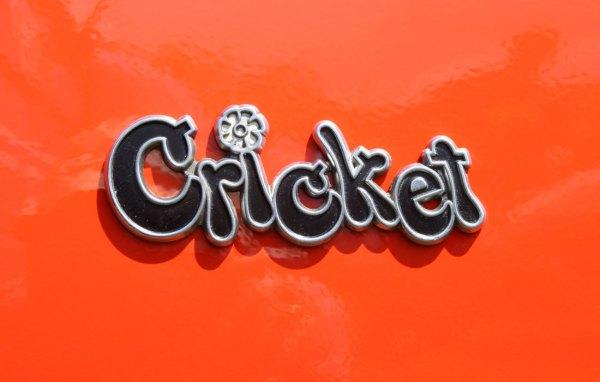plymouth_cricket_emblem_71