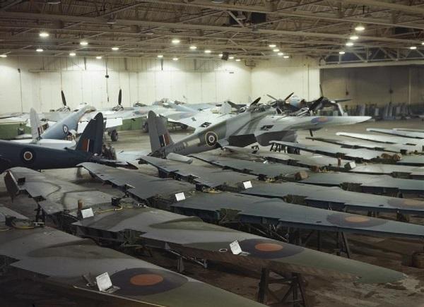 12 wings hatfield