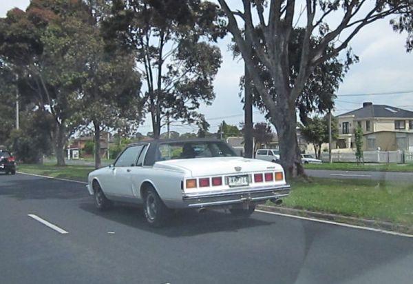 1981 Chevrolet Caprice 3