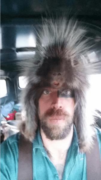 nick-porcupine