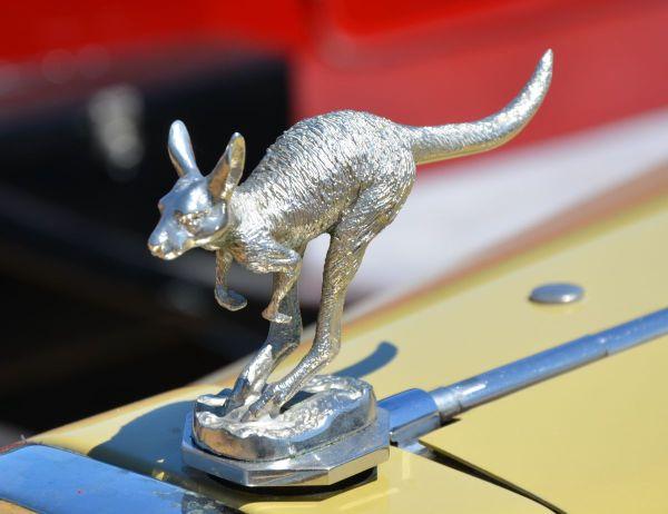 lancia-lambda-kangaroo-mascot