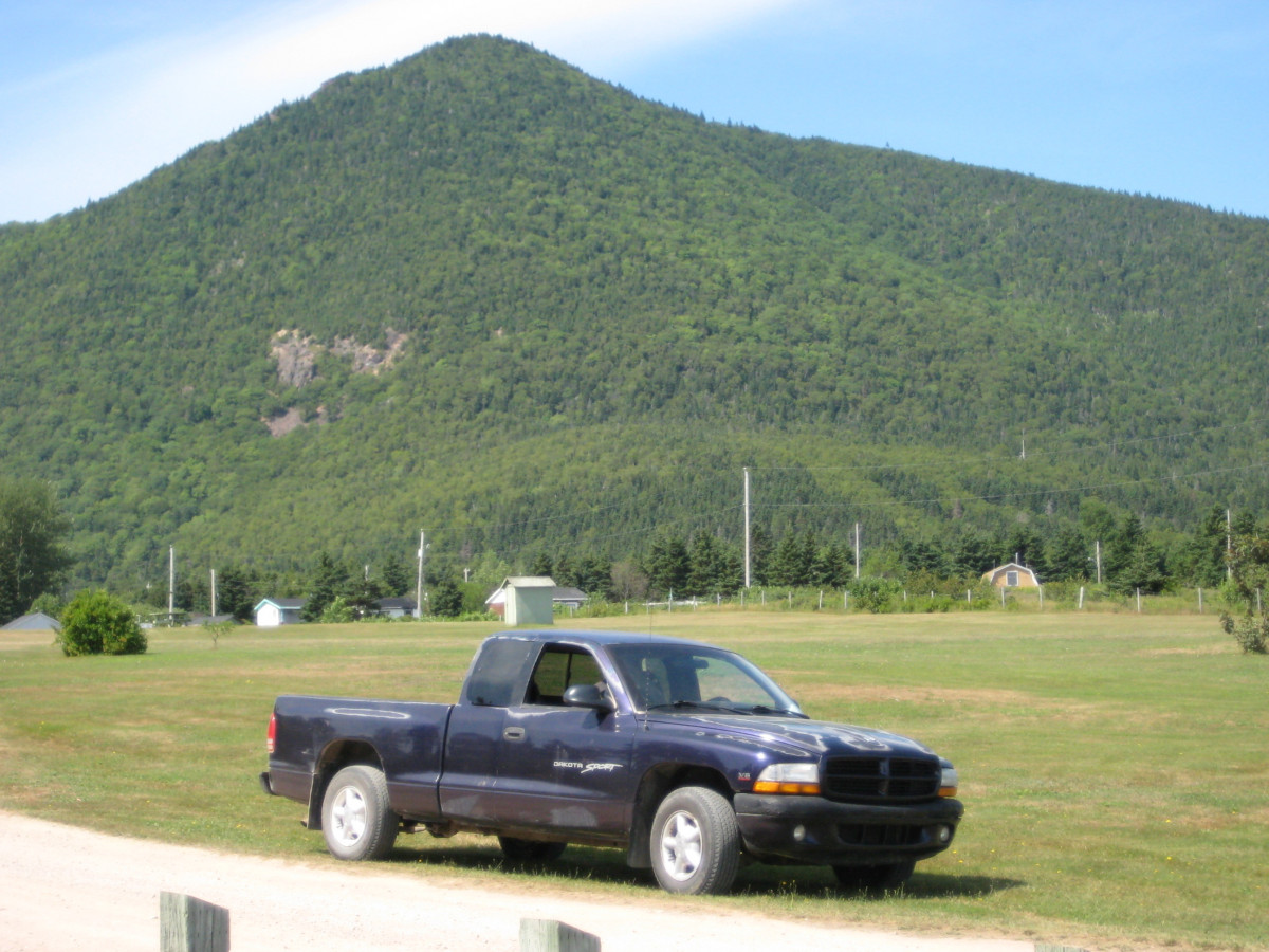 Coal1998 Dodge Dakota Plum Crazy Oil Pressure Sensor 1999