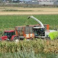 Dry land and sunny weather, so far the harvesting circumstances have been optimal for the farmers and the agricultural contractors they hire. After abundant rainfall, the harvest is often a […]