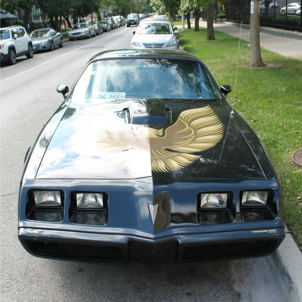 1981 Pontiac Firebird Trans Am - front view