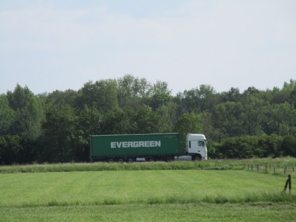 DAF Evergreen