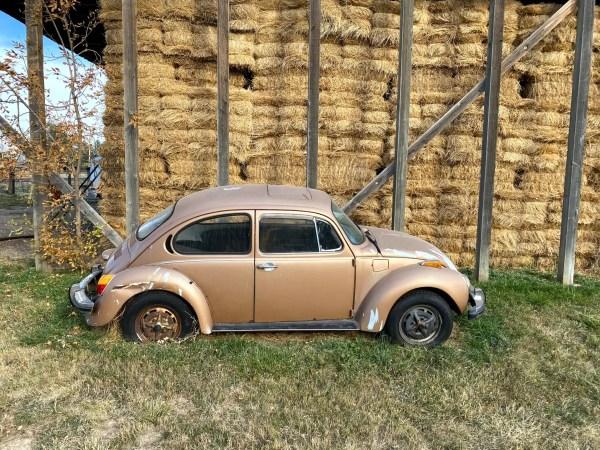 1974 Super Beetle