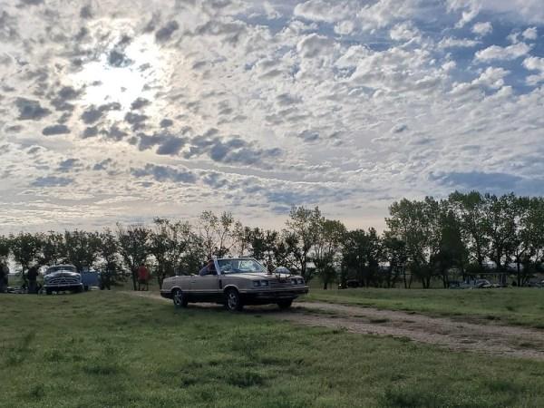 1983 Dodge 400 convertible