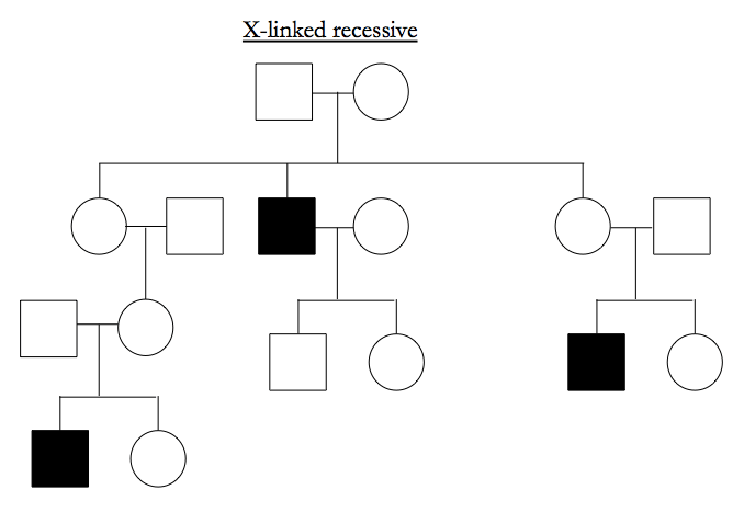 Genetics 23: 'Genetics in families and the analysis of