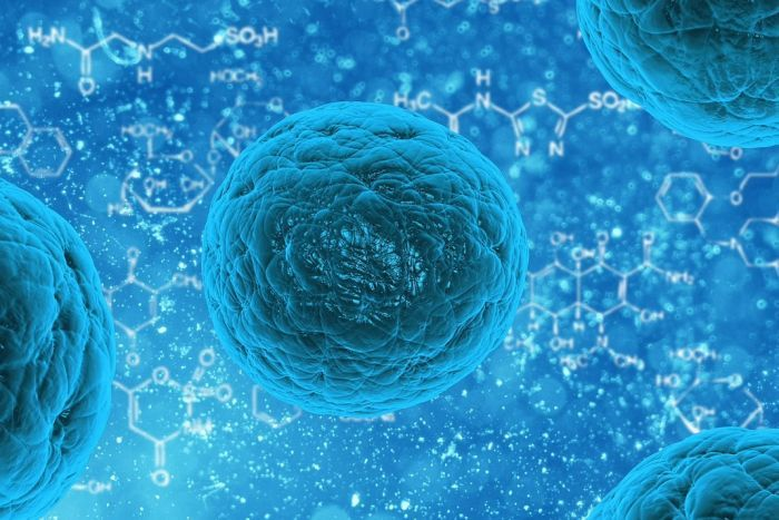 Should unproven stem cell therapies be regulated?