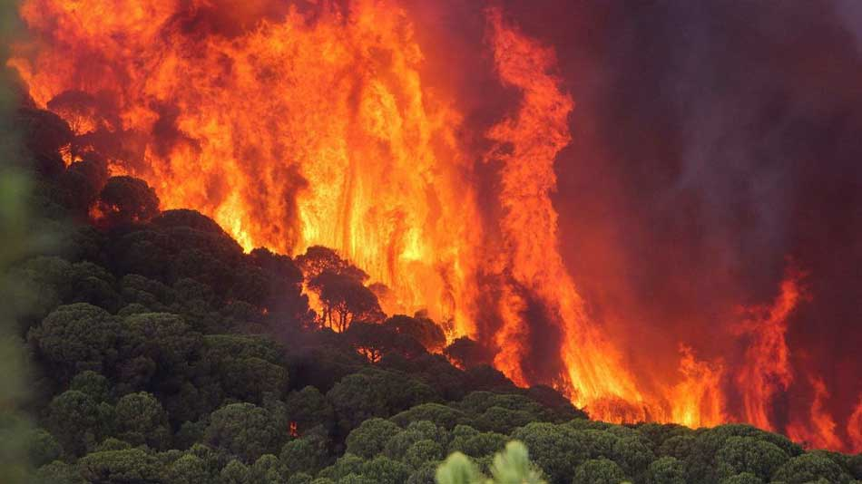 incendio consecuencia ola de calor