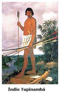 Ubatuba Tupinambá
