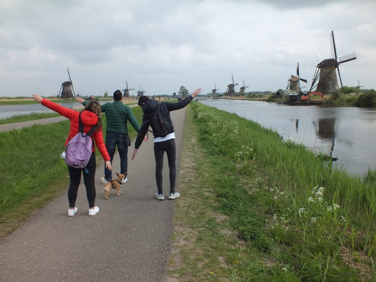 Kinderdijk: Paesi Bassi