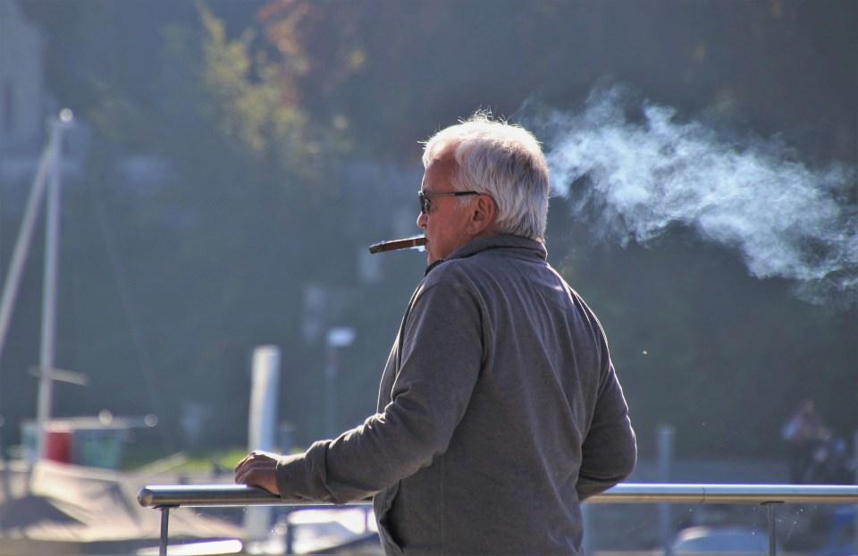 Factores que inciden en la aparición del cáncer de pulmón
