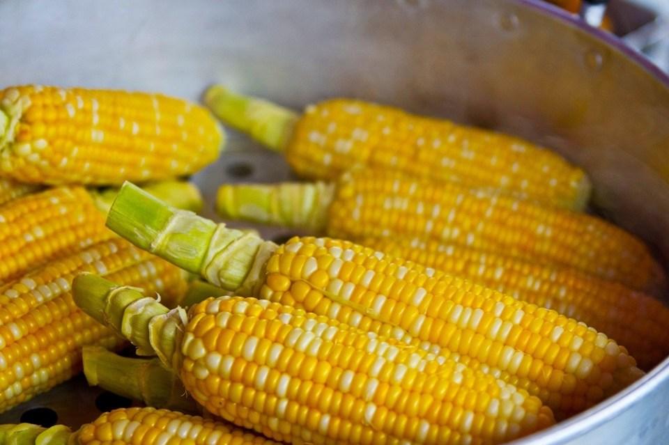 Mazorca de maíz, uno de los alimentos para tomar antes de entrenar