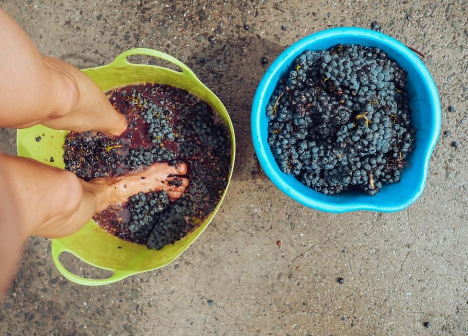 Te contamos que son los sulfitos del vino